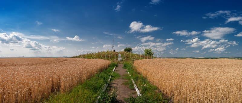  geodésico рк de Struve Ð para medir a terra no campo de trigo fotos de stock royalty free