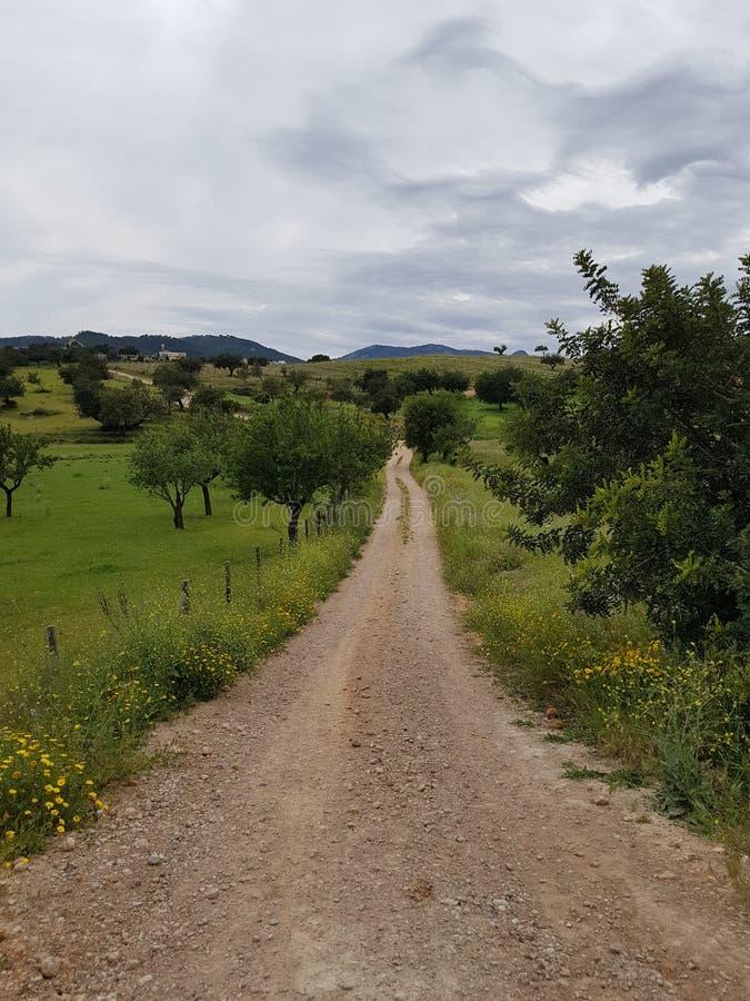 ¡ För allà för ¡ s för Camino almÃ, arkivfoto