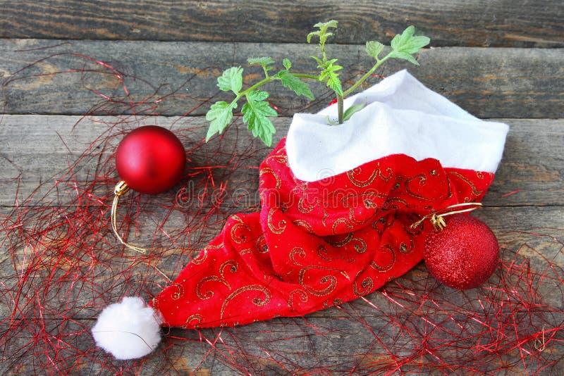 ¡El Año Nuevo es una nueva vida! fotografía de archivo libre de regalías