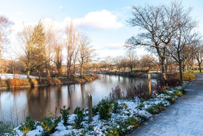 ¡País de las maravillas del invierno en Belfast! fotografía de archivo