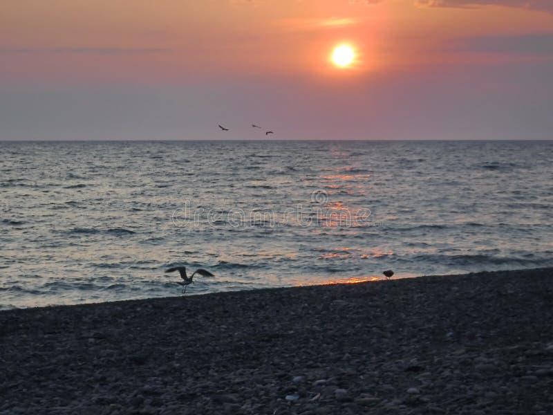 ¡Puestas del sol magníficas del Mar Negro! La belleza irreal parece ser un acontecimiento ordinario imagenes de archivo