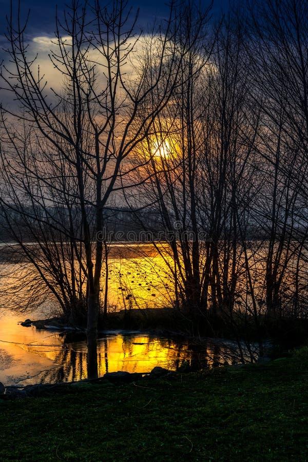¡Tiempo de oro! La puesta del sol detrás de árboles en una mitad frzen el lago imagenes de archivo