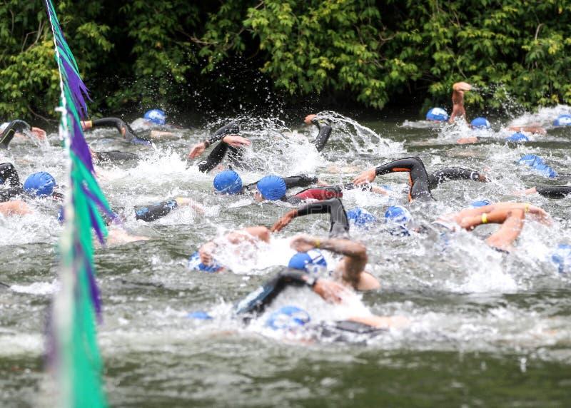 ¡VAYA!!! Los nadadores compiten con en la línea del comienzo del Triathlon imagen de archivo