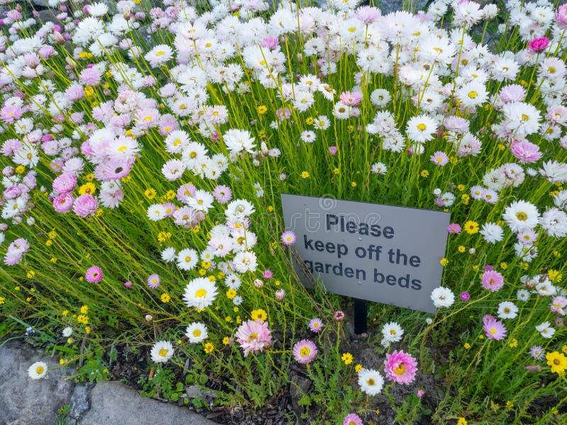 «Zadawala utrzymanie z ogrodowego łóżek kwadratowy znak ostrzegawczy na dzikim białej stokrotki ogródzie botanicznym obrazy stock