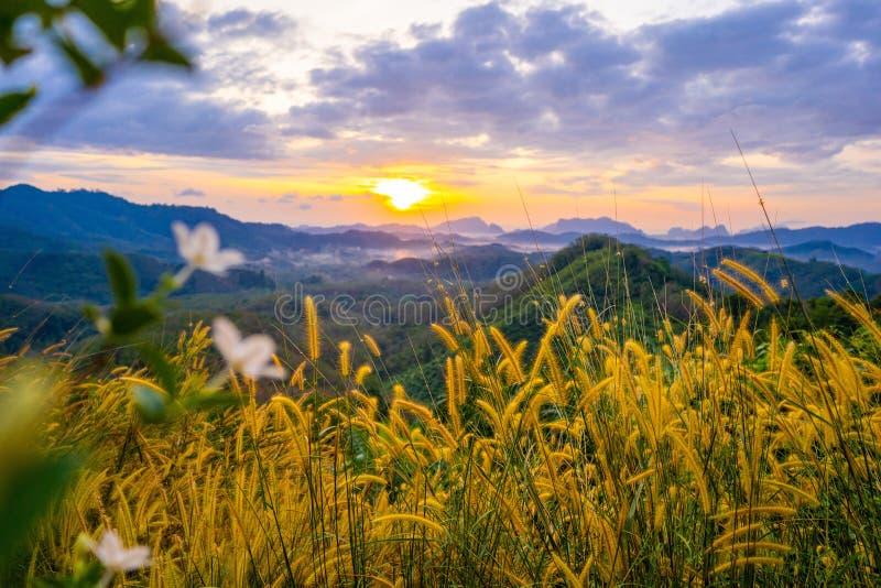 1° gennaio 2018 - nga di Phang:: Alba alla provincia di nga di Tun Viewpoint Phang di tum di Phu fotografia stock libera da diritti