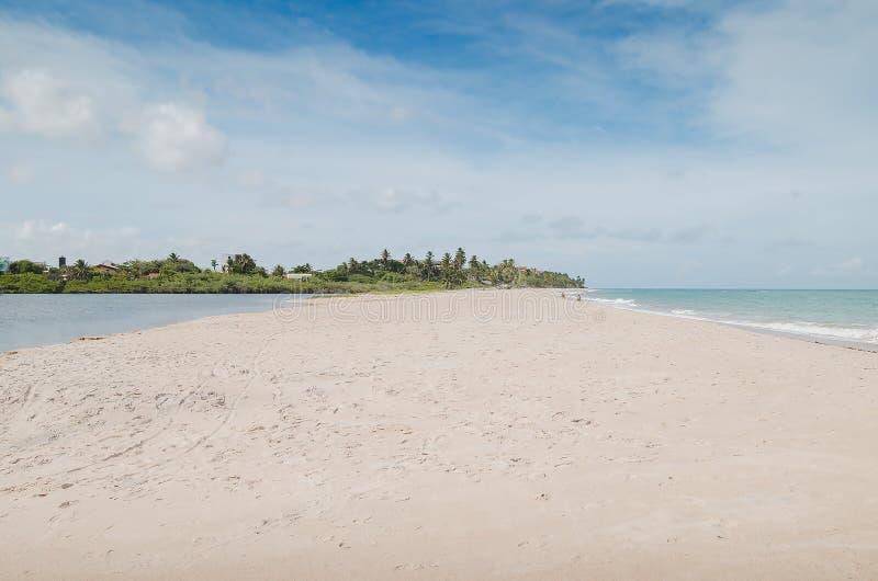 ³ Maceià пляжа Tabatinga, PB Conde стоковые изображения