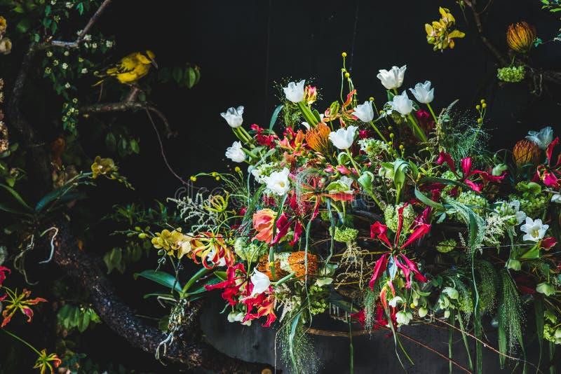 ¼ bonito ŒBonsai do decorationï do arranjo de flor em uma cadeira azul ilustração stock