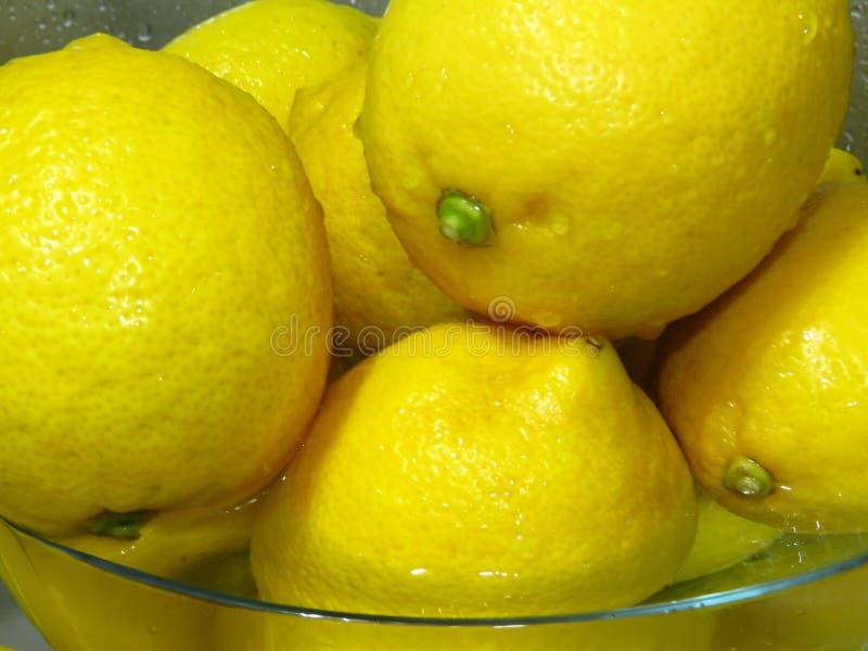 ¿Cómo lavar los limones? Limones amarillos maduros jugosos en agua Ricos sanos de la fruta tropical de la vitamina C imágenes de archivo libres de regalías