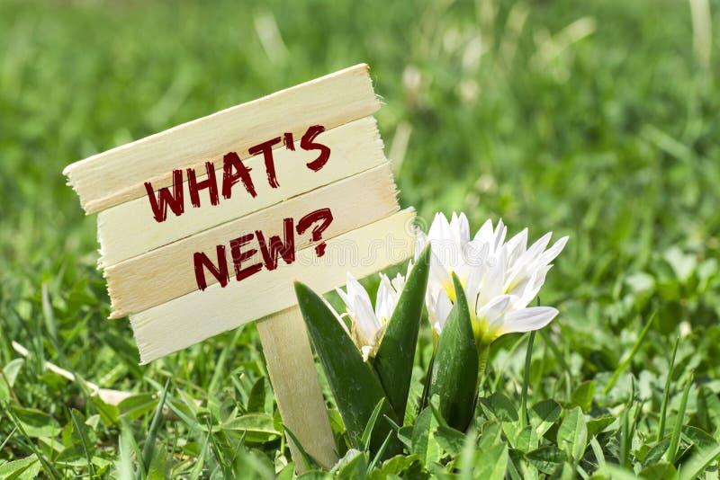 ¿Qué ` s nuevo? foto de archivo