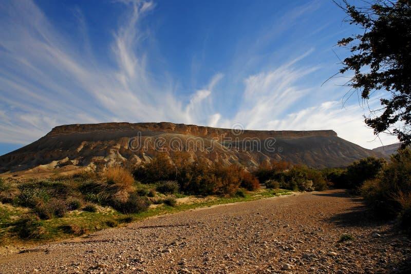 ¿Tormenta de desierto? fotografía de archivo