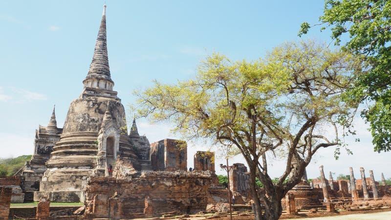 """À¸§à¸±à¸ Wat Phra SisSanphet"""" พระศรีสรร࠹ €à¸žà¸Šà¸ à¹ Œ lizenzfreie stockbilder"""
