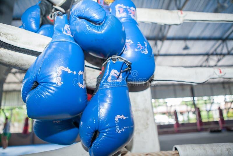 ฺBlue de Thaise bokshandschoenen die van Muay op Hoek van het in dozen doen rin hangen stock fotografie