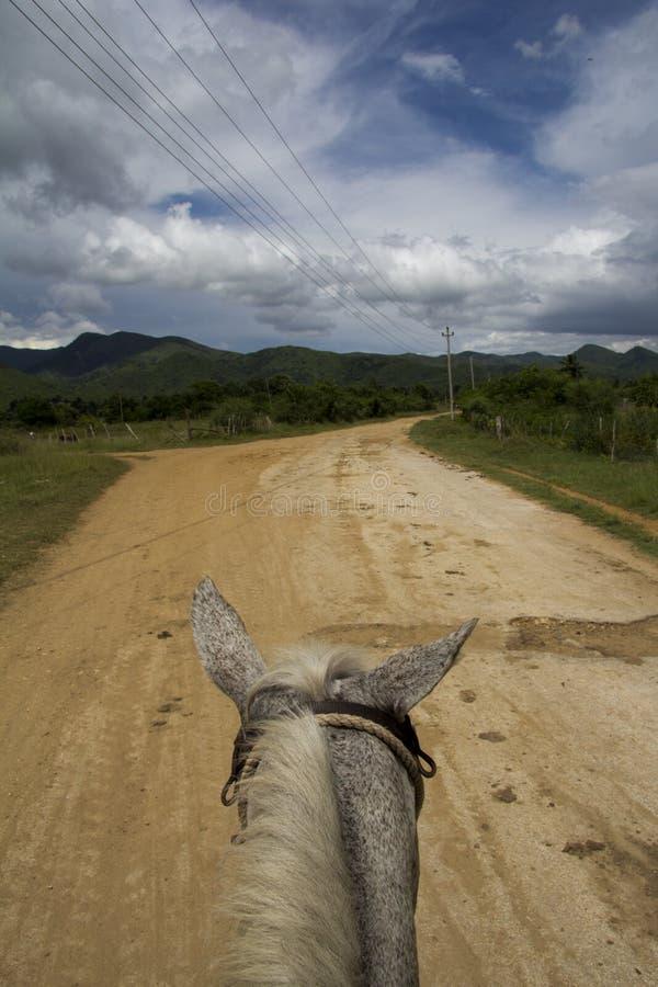 À cheval par l'horizontal du Trinidad photos libres de droits