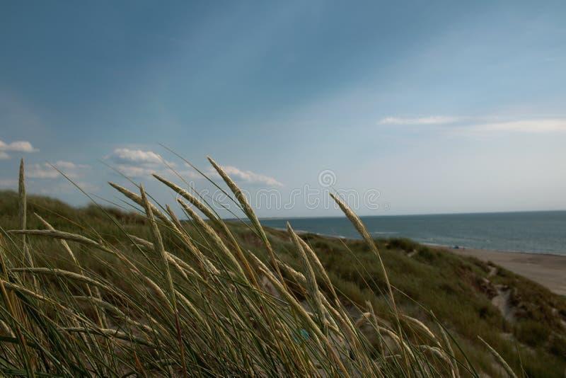 À la côte ouest Ind Danemark photos stock