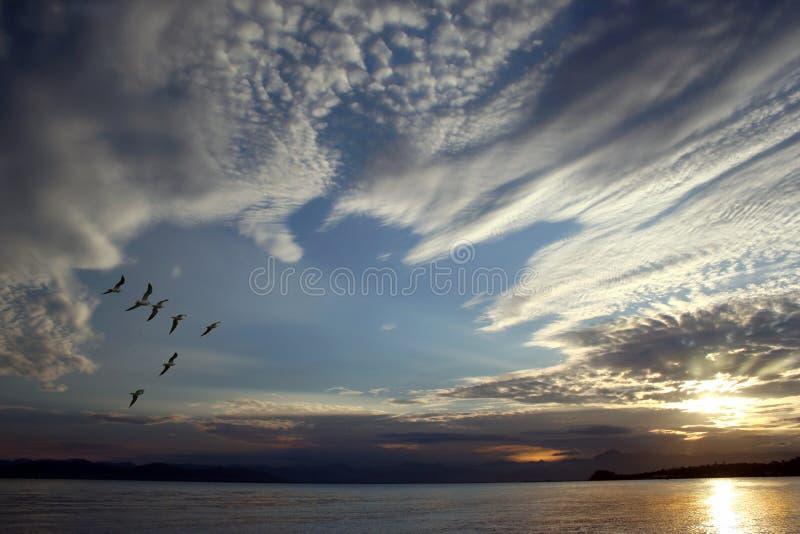 À la suite du coucher du soleil images libres de droits