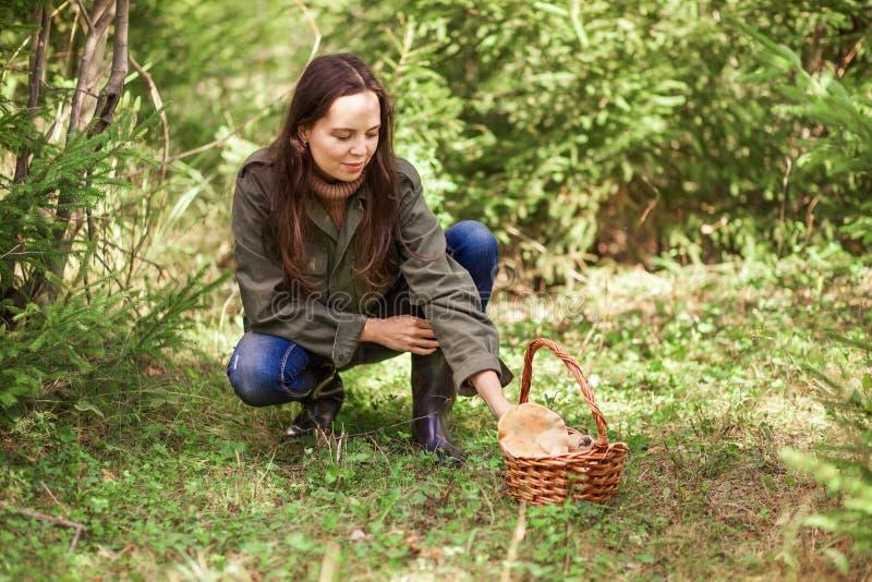 Download À Sélectionner Des Champignons Photo stock - Image du nature, heureux: 77155848