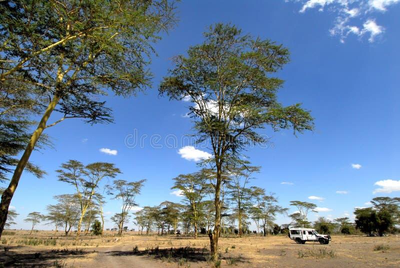 África fotos de stock
