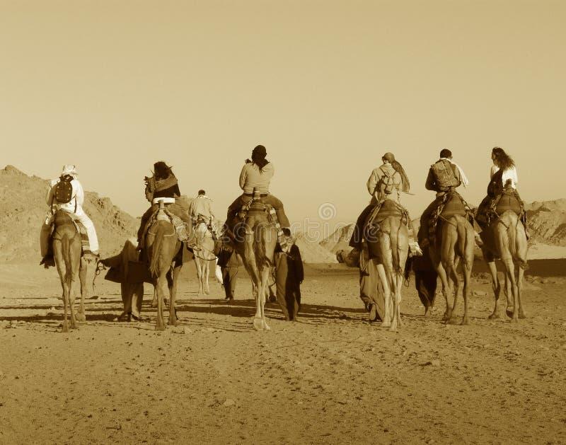 África en sephia imagenes de archivo