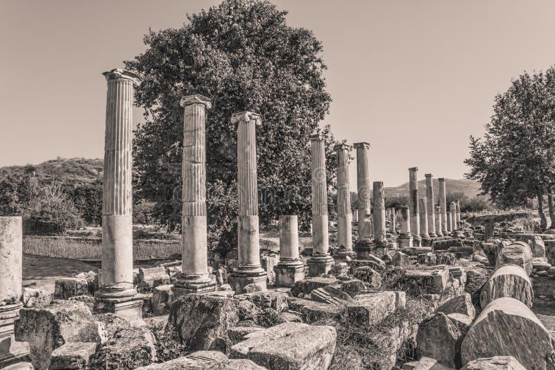 Ágora Sul - Aphrodisias Fotografia de Stock
