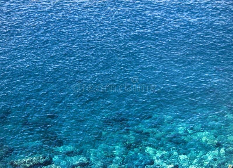 Água azul claro do oceano Feche acima do tiro com luzes muito agradáveis e do coral que mostra abaixo da superfície Environme med fotos de stock