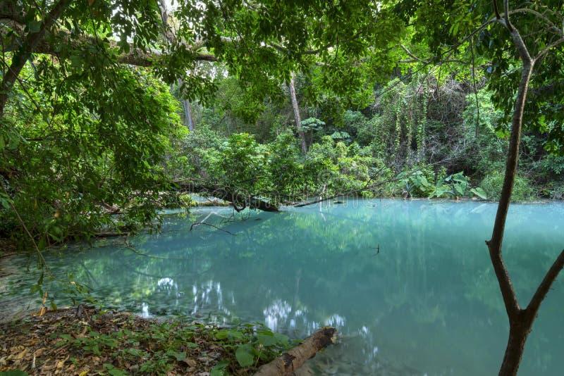 Água azul de turquesa selva em Chiapas, México fotos de stock royalty free