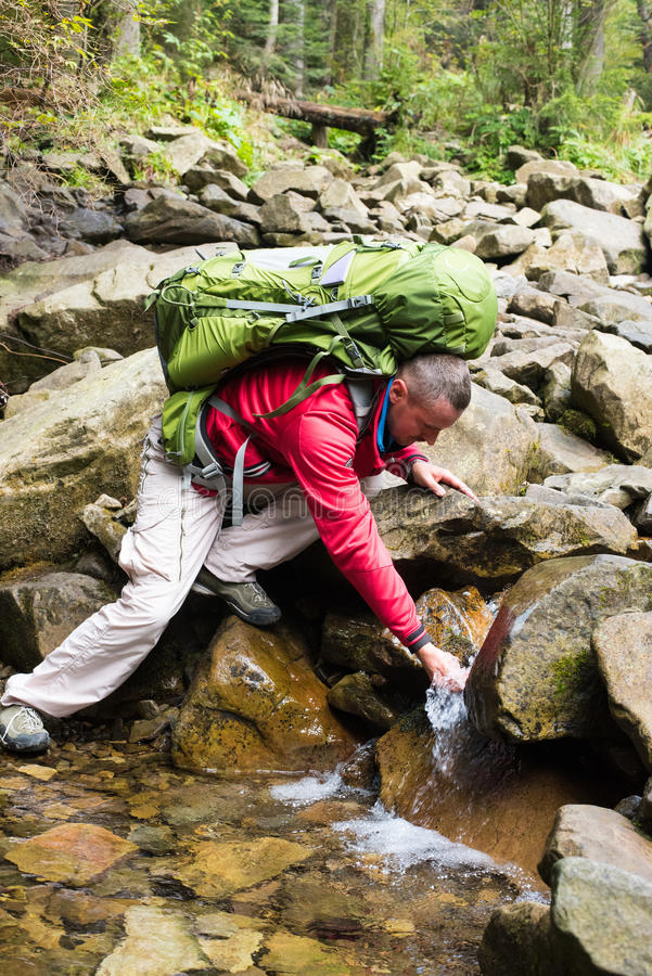 Água bebendo do córrego do caminhante foto de stock