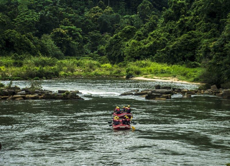 Água branca que transporta em Kitulgala Sri Lanka imagens de stock