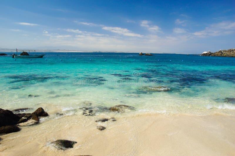 Água clara em uma praia da ilha fora da costa do Chile do norte imagens de stock royalty free