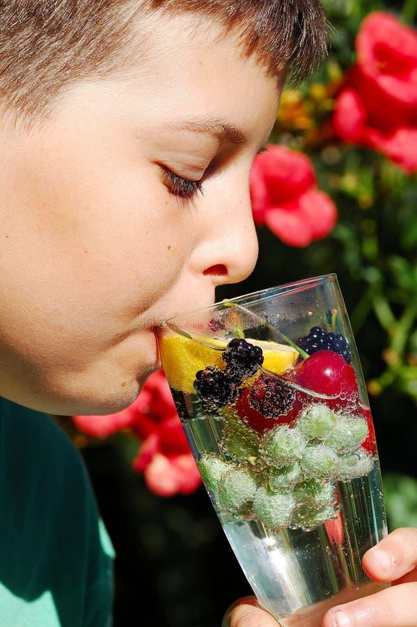 Água com frutas foto de stock