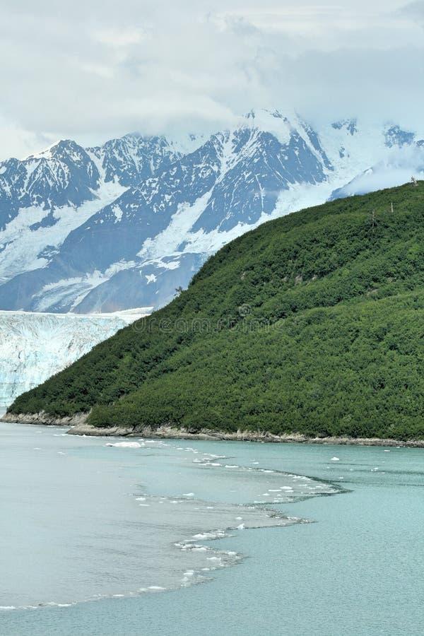 Água da geleira fotos de stock