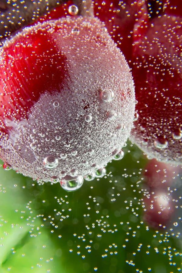 A água da uva borbulha macro escuro do fundo da folha verde imagem de stock royalty free