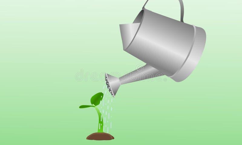 Água das plantas fotografia de stock royalty free