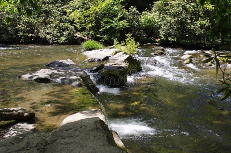 Água de conexão em cascata que olha através de um córrego imagens de stock