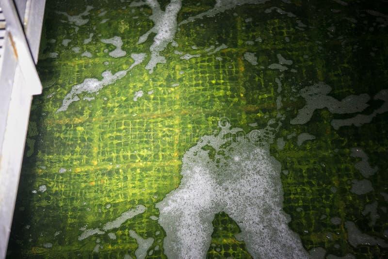 Água de esgoto nos tanques biológicos da purificação na planta de tratamento de águas residuais imagem de stock