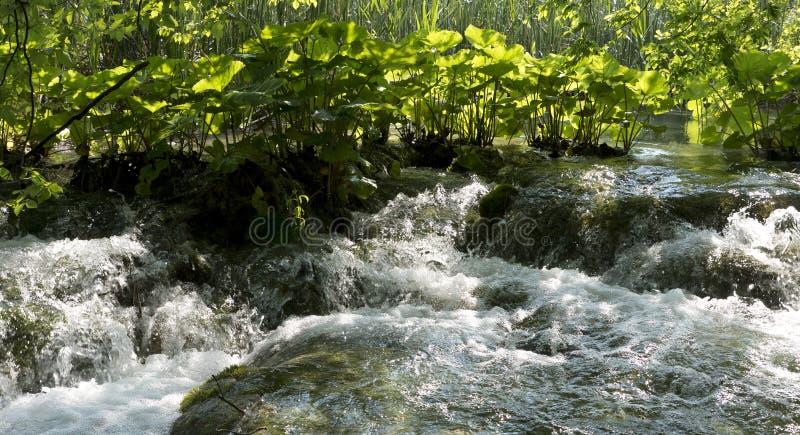 Água de jorro em uma angra fotografia de stock