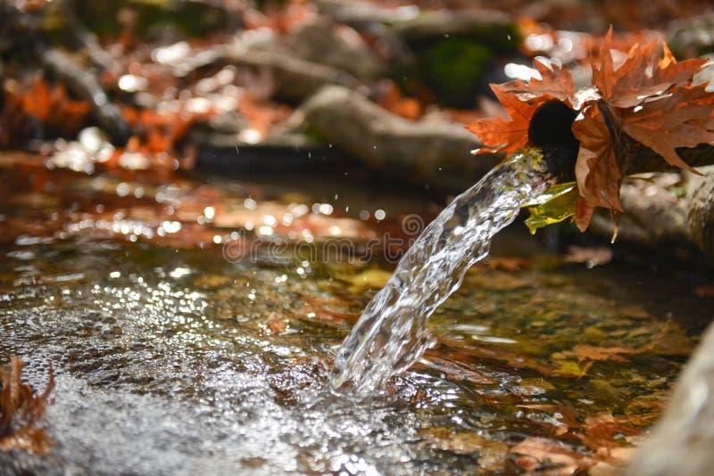 Água de mola natural foto de stock royalty free
