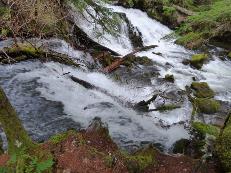 Água de pressa imagens de stock royalty free
