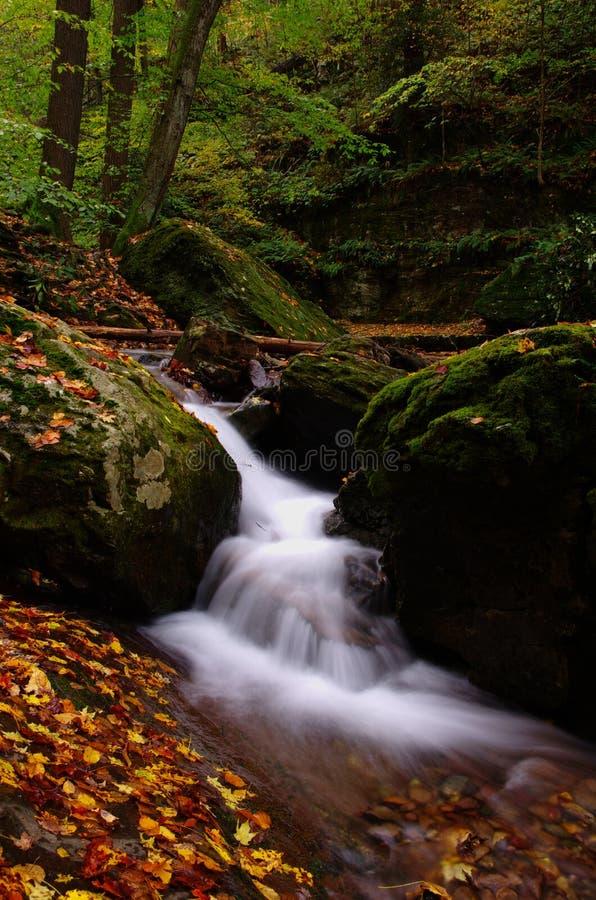 Água de pressa de Autunm fotos de stock