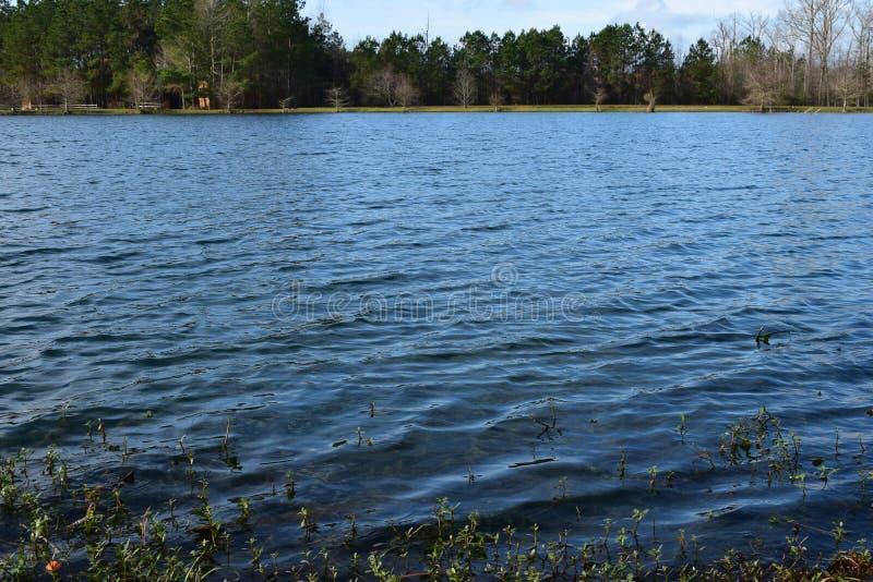Água de Quite Lake em Daylight fotografia de stock
