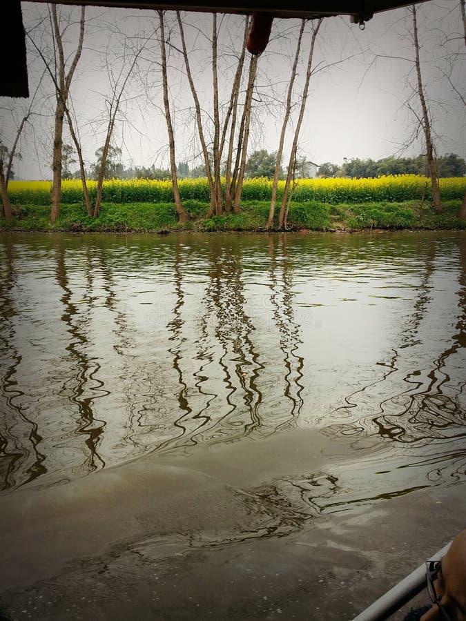 Água do rio fotografia de stock royalty free