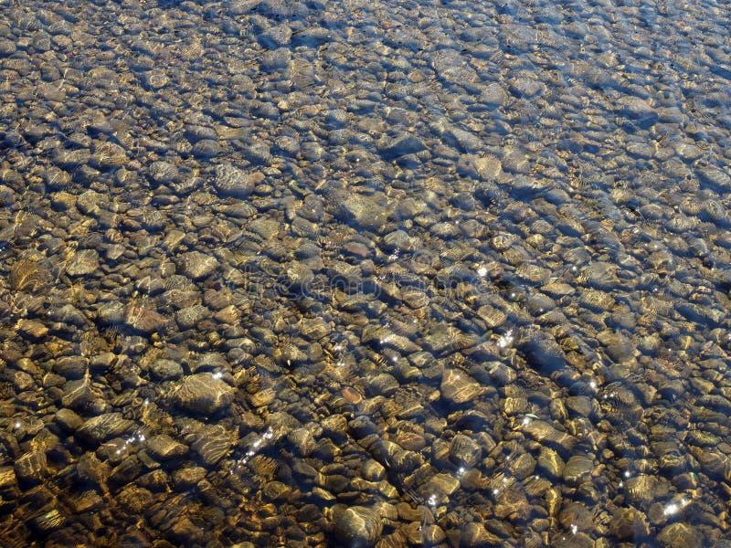 Água do rio rasa clara que flui sobre seixos fotos de stock