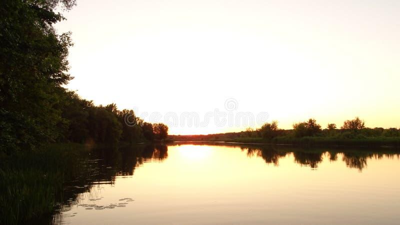 A água e as árvores verdes Por do sol sobre o rio imagem de stock