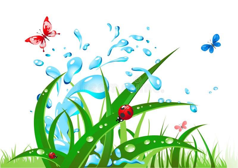 Água e grama do respingo ilustração royalty free