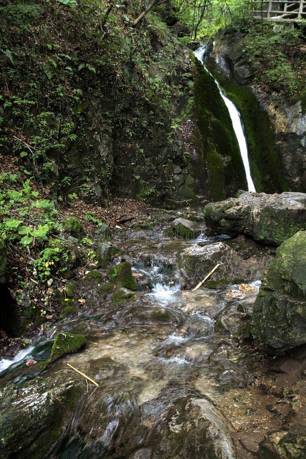 Água e rocha de mola claros fotos de stock royalty free
