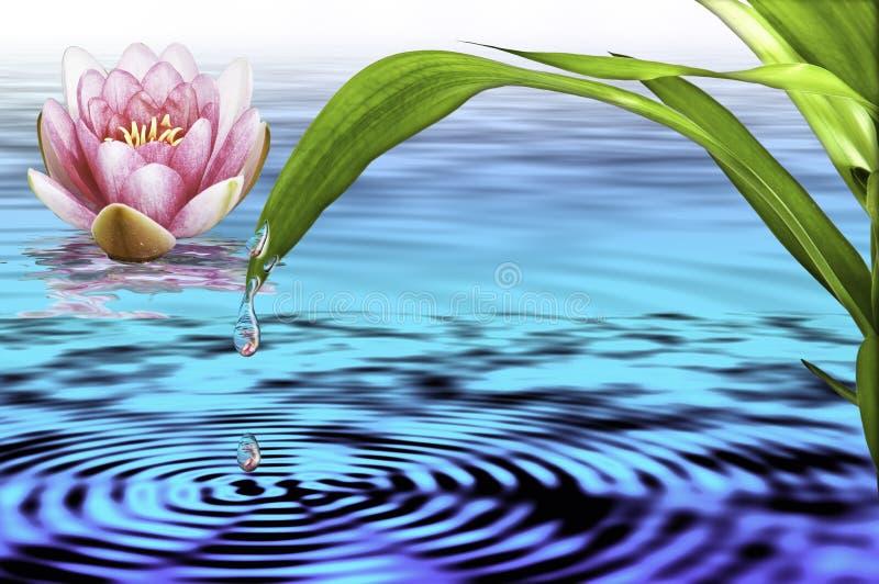 Água e vida ilustração stock