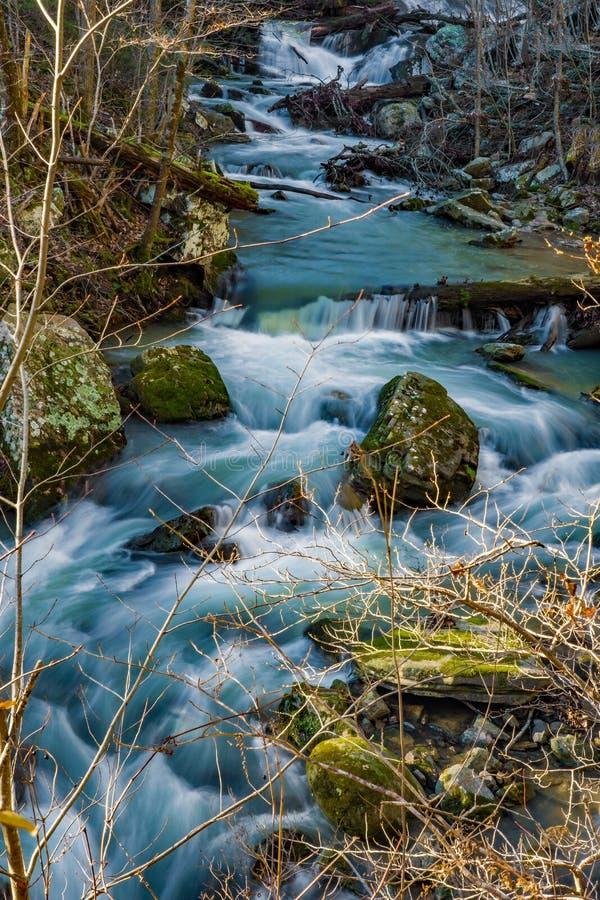 Água movente rápida em um córrego selvagem da truta da montanha fotografia de stock