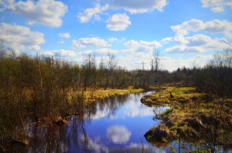 Água no rio imagem de stock