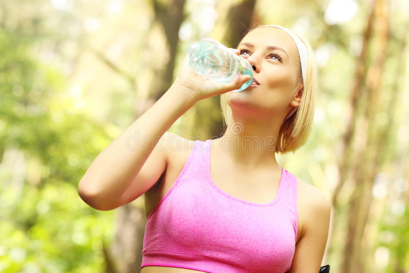 Água potável apta da mulher na floresta imagem de stock