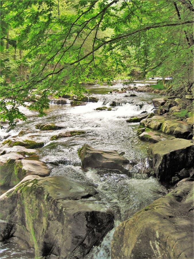 Água que conecta sobre rochas na angra de Cades imagem de stock royalty free