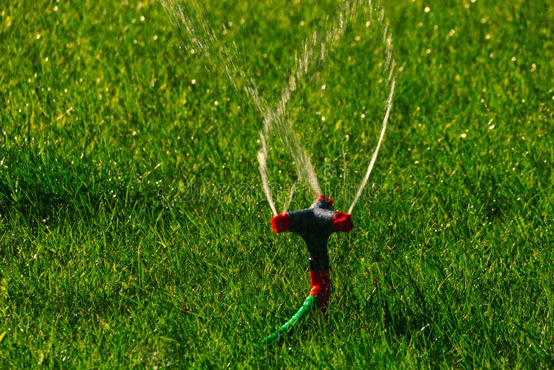 Água que espalha pelo sistema de extinção de incêndios do gramado, waterdrops congelados em um ar imagem de stock royalty free